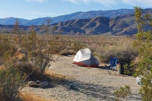 Anza-Borrego Palm Canyon Campground