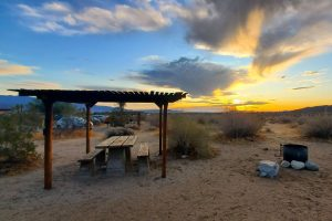 Borrego Palm Canyon Campground