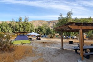 Tamarisk Grove Campground