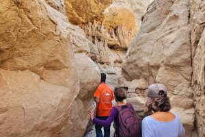 Slot Canyon Trail Hikers
